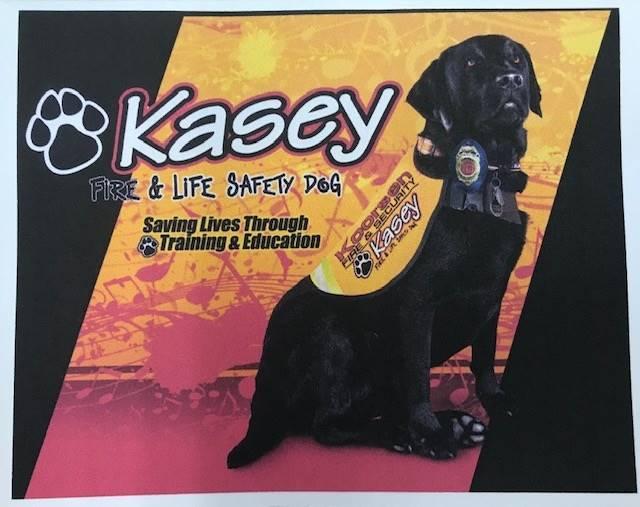 K9 Kasey